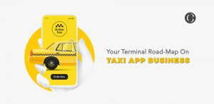 A Synopsis Of The Aggregated Data And Information Guiding Through Making A Decision About Developing On-Demand Taxi Services